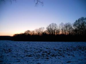 2012 Winterwanderung